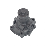 Iveco Tractor Water Pump